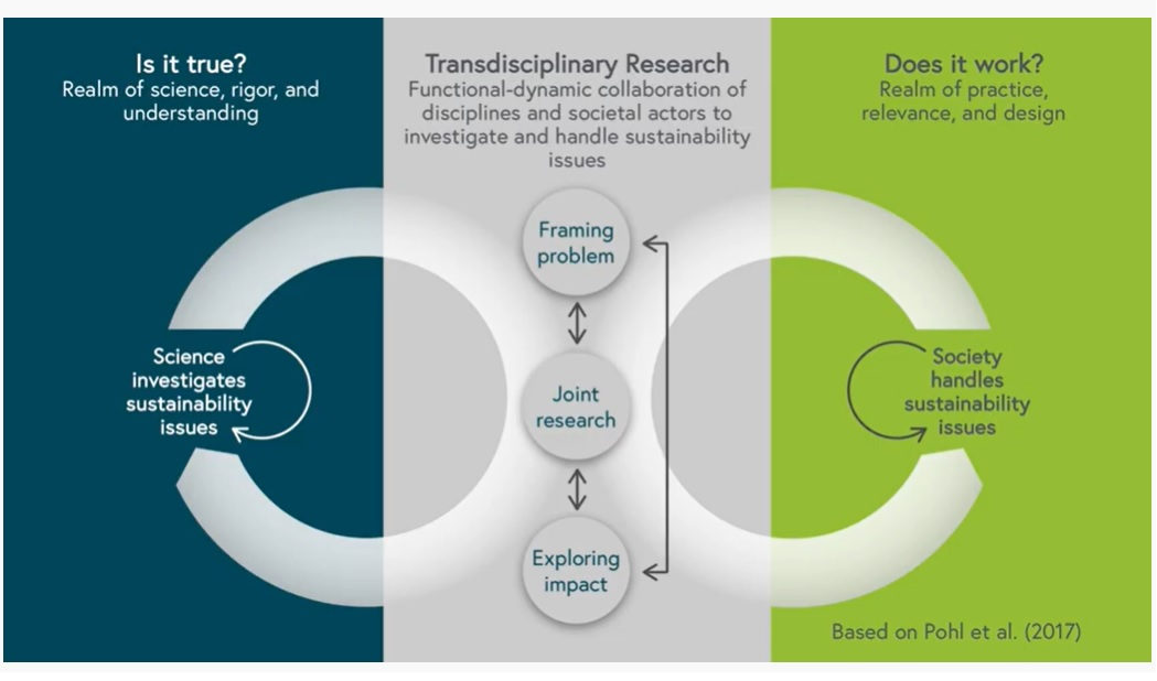 pohl_three-phases_of_transdisciplinary-research_on_sustainability-issues